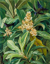 10694564