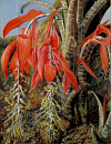 10694575