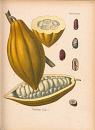 10694896