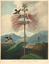 10694942