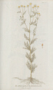 10694980