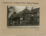 10415946