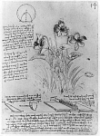 10312969