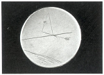 10195073