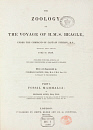 10425490