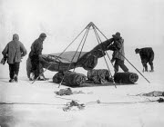 10309293