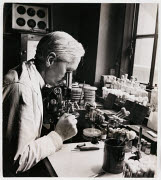 10308494