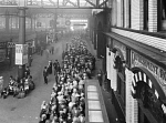 10444502