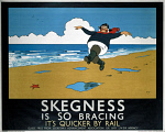 10176049