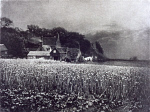 10326755