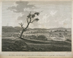 10415668
