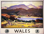 10171254
