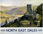 10172184