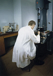 10285205