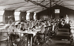 10323905