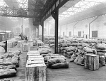 10444418