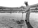 10467019