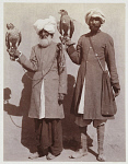 10428742