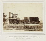 10446450