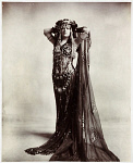 10440658