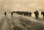10465276