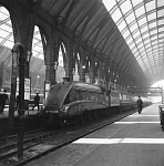 10446392