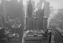 10310235