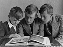 10310608