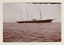10571307