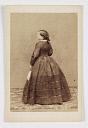 10597519