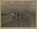 10598437