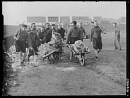 10660659