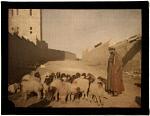 10458309