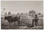 10439535