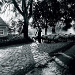 10312839