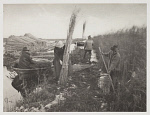 10453850