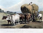 10317354