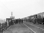 10443980