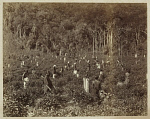 10463888