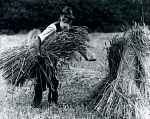 10312698