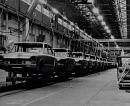 10313342