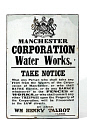 10689729