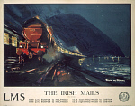 10173221