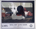 10173244