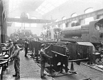 10444253