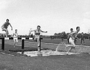 10624263