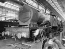10647406