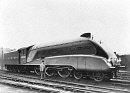 10653028