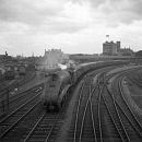 10653032