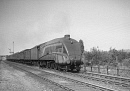 10653035